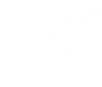 logo_white-transparent
